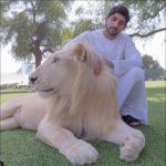 ドバイのイケメン王子・ハムダン皇太子のペット、鷹やライオン画像!